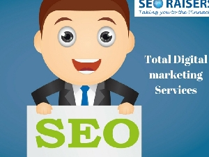 SEORAISERS : Best SEO Company in Chandigarh